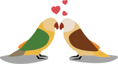 Love_Birds-02